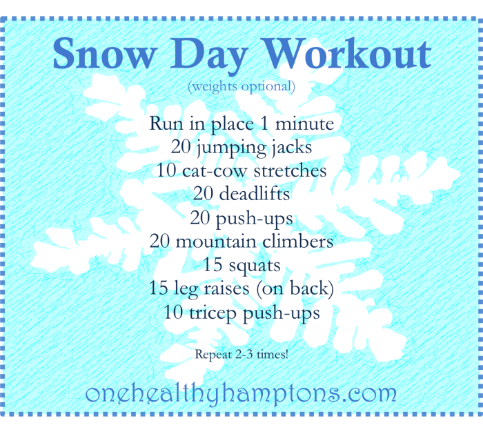 snowdayworkout